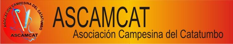 catatumbobanner