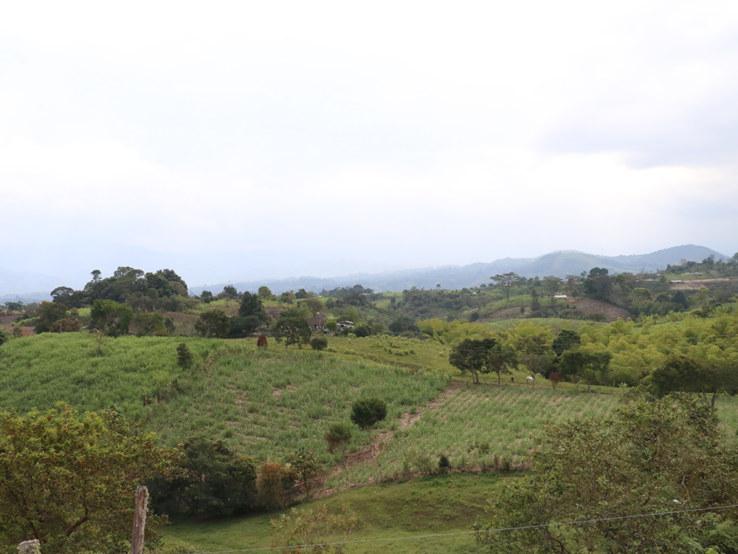 seo- tierras-hv